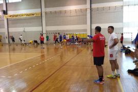 handball-for-all-2014-004
